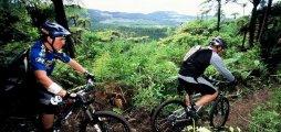 Half Day Mountain Biking, Lunch & Polynesian Spa